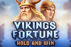 Viking's Fortune: Hold and Win